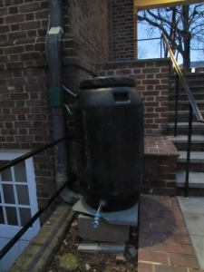 A plastic tank collects water from a downspout for use in a courtyard. Photo: David Garth