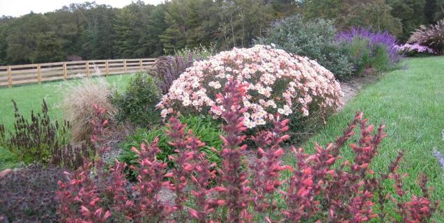 The Ornamental Garden in October