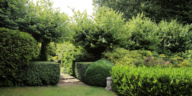 Hedging Our Landscaping Bets